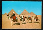 EGYPT Modern Coloured Postcard of Camels at the Pyramids. - 444988 - Postcard