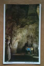 Coloured postcard by Tanner Couch of the Cathedral Waitomo Caves - 46441 - Postcard