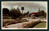Tinted Postcard by  A B Hurst & Son of Clive Square Napier. - 48042 - Postcard