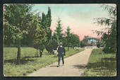 Coloured postcard by Muir and Moodie of Seymour Square Blenheim. - 48709 - Postcard