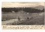 Early Undivided Postcard of Newtown Park Wellington. - 247359 - Postcard