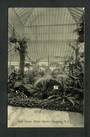 Postcard of Palm House Winter Gardens Dunedin. - 249138 - Postcard