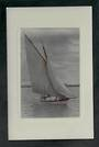 Real Photograph of Yacht on Auckland Harbour. - 42551 - Postcard