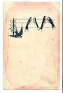 Delicate art card of swallows. Tired. - 43761 - Postcard