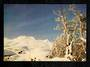 Modern Coloured Postcard of Mt Ruapehu from the Ohakune Road. - 446811 - Postcard