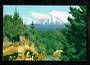 Modern Coloured Postcard by G B Scott of Mt Ngauruhoe. - 446813 - Postcard