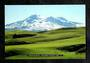 Modern Coloured postcard by PPL of Hastings of Mt Ruapehu. - 446823 - Postcard