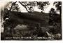 Real Photograph by T G Palmer & Son of Waipoua Forest Settlement. - 44766 -