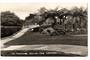 Real Photograph by T G Palmer & Son of The Footbridge Central Park Whangarei. - 44834 - Postcard