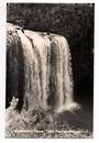 Real Photograph by T G Palmer & Son of Whangarei Falls. - 44985 - Postcard