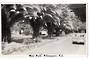 Real Photograph by N S Seaward of Mair Park Whangarei. - 45010 - Postcard
