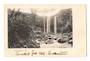 Early Undivided Postcard of the Whangarei Falls. - 45034 - Postcard