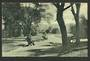 Postcard of The Domain Gardens Auckland. - 45194 - Postcard