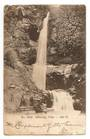 Early Undivided Postcard of Nihotopu Falls Auckland. Minor fault. - 45626 - Postcard