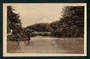 Real Photograph of Mount Egmont from Recreation Grounds New Plymouth. - 46963 - Postcard