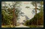 Coloured postcard of Awahuri Road Palmerston North. - 47248 - Postcard