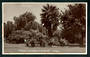 Real Photograph of Levin Gardens. - 47315 - Postcard