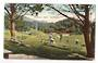 Coloured postcard of Newtown Park Wellington. - 47420 - Postcard