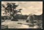 Postcard of Fish Hatcheries Masterton. - 47865 - Postcard