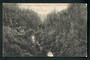 Postcard of Makuri Gorge near Pahiatua. - 47896 - Postcard