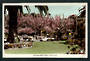 Coloured Real Photograph by Hurst of Clive Square Napier. - 47925 - Postcard