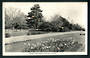 Real Photograph by A B Hurst & Son of Cornwall Park Gardens Hastings. - 48024 - Postcard