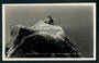 Real Photograph of Gannet Sanctuary Cape Kidnappers. - 48069 - Postcard