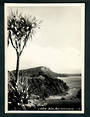 Real Photograph of Parekiri Bluff Lake Waikaremoana. - 48201 - Postcard