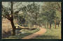 Coloured postcard of Rivwer Avon Hagley Park. - 48333 - Postcard