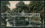 Postcard of the White Bridge Botannical Gardens Christchurch. - 48428 - Postcard