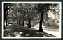 Real Photograph by Hurst Avon River Bank Christchurch. - 48451 - Postcard