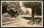 Real Photograph by A B Hurst & Son of Anzac Park Nelson. - 48622 - Postcard