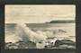 Postcard of Lawyer's Head Dunedin. - 49233 - Postcard