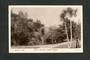 Real Photograph by Gill of a scene in Botannical Gardens Dunedin. - 49274 - Postcard