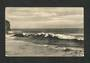 Postcard of Lawyer's Head Dunedin. - 49287 - Postcard