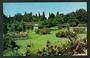 Coloured postcard of Rose Gardens Victoria Park Waimate. - 49513 - Postcard