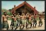 Coloured postcard of Maori Haka. - 49654 - Postcard