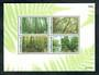 THAILAND 1996 Centenary of the Royal Forest Department. Miniature sheet. - 50118 - UHM
