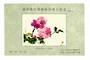 CHINA. 1984 Cinderella Painting of Flowers Miniature Sheet.CHINA Cinderella Miniature Sheet. - 50709 - UHM