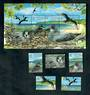 PITCAIRN ISLANDS 2004 Murphy's Petrel. Set of 5 and miniature sheet. - 52177 - UHM