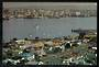 Large-sized modern coloured postcard of Auckland. - 524882 - Postcard