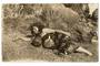 Real Photograph of Maori Girl. - 69660 - Postcard