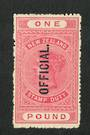 NEW ZEALAND 1882 Victoria 1st Long Type Fiscal Official £1 Pink. - 74034 - Mint